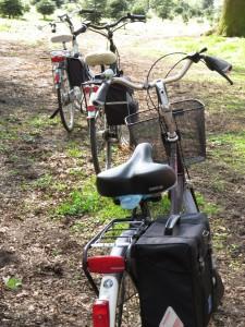 Tagesausflug mit dem Fahrrad @ Treffpunkt: Mühle Westkirchen