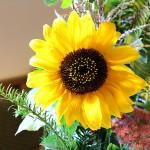 Blumendeko im Trauzimmer